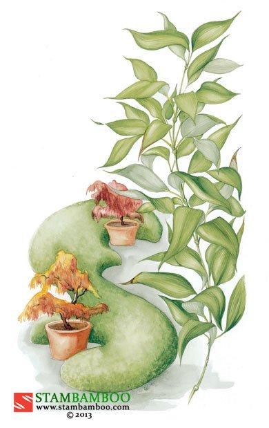 Shibataea kumasaca